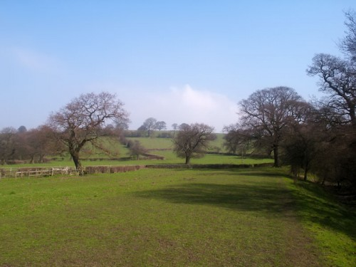 Pasture near Beeley