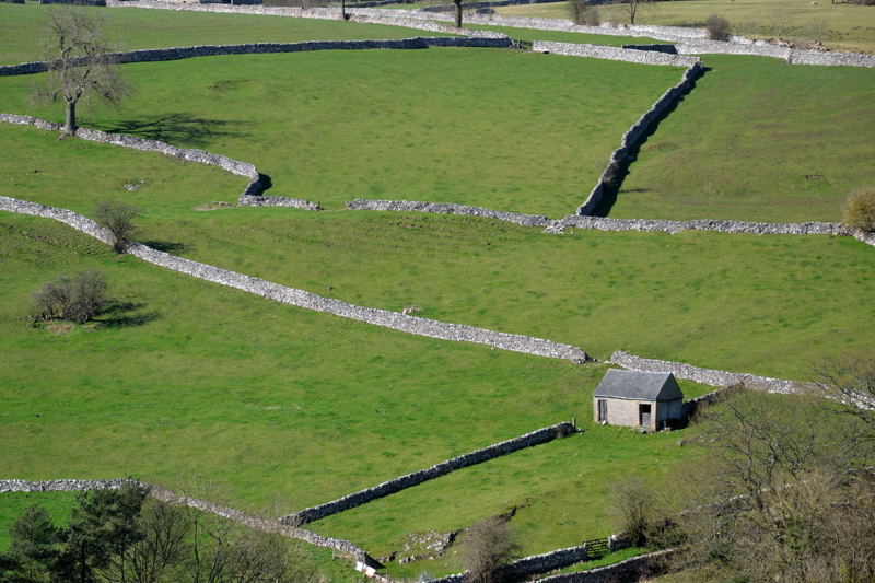 Dry Stone Walls above Milldale