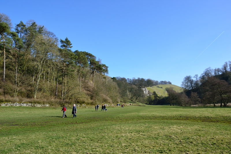 Pasture bewteen Beresford Dale and Wolfscote Dale
