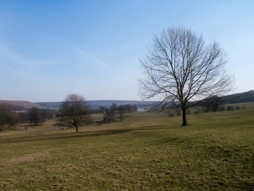 Chatsworth Park looking towards Calton Lees