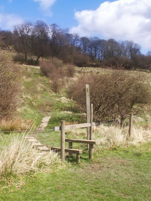 Stile and footpath leading up to Stoop Wood