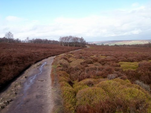 Footpath on Stanton Moor