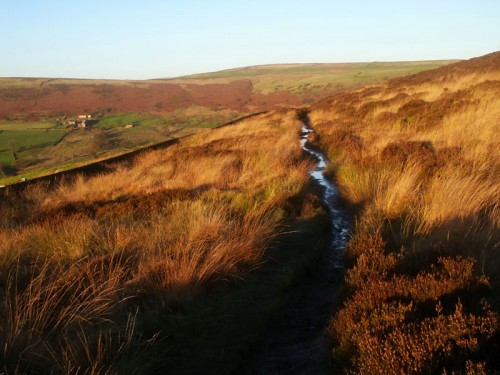 The footpath to Gradbach & Lud's Church leads off the ridge to the east