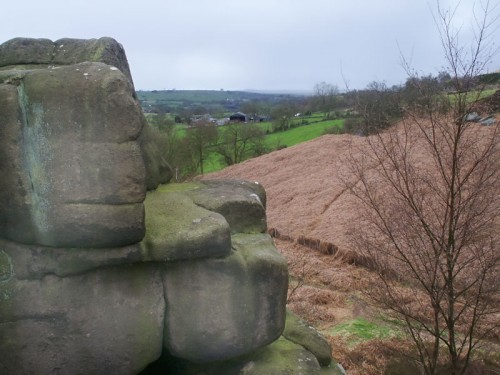 Gritstone outcrop on Stanton Moor edge