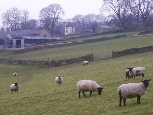 Longnor from the Manifold Trail