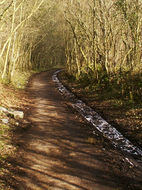 The Manifold Trail near Ecton