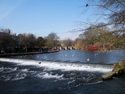 The market town of Bakewell is famous for it's Bakewell Pudding. The pudding was made by accident when the cook of the White Horse Inn added an egg mixture to pastry spread with jam. The rest as they say is history!