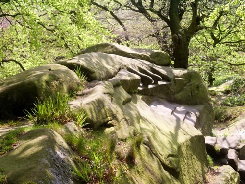 Carved Armchairs at Rowtor Rocks