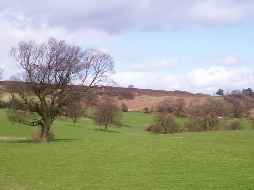 Stanton Moor from Barn Farm