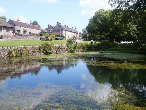 The Duck Pond at Tissington is just of the cycle trail.