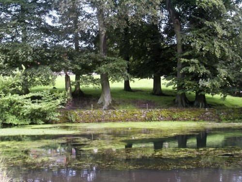 The Duck Pond at Tissington