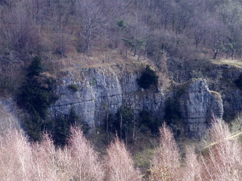 Zooming in on the limestone gorge in Millers Dale
