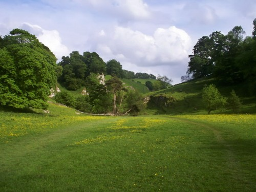 Pasture between Beresford Dale and Wolfscote Dale