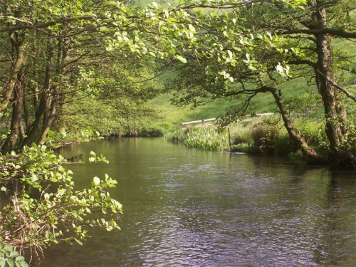 River Dove in Wolfscote Dale below Drabber Tor
