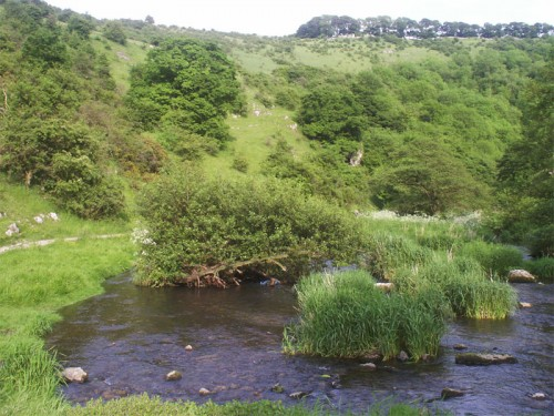 The River Dove near Biggin Dale