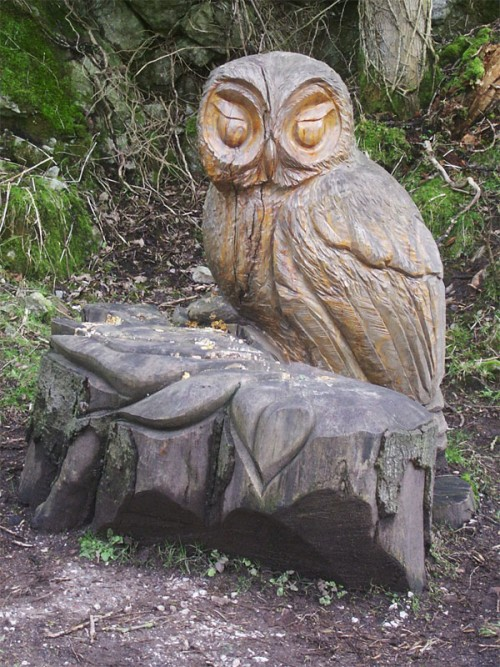 Tawny Owl sculpture by Andrew Frost, one of a number of wood carving in Tideswell Dale
