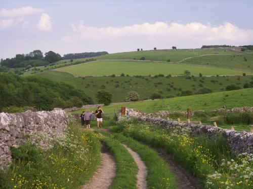 A track rises up from Biggin Dale along the lower slopes of Wolfscote Hill towards Hartington